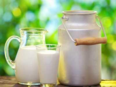 牛奶不能和什幺一起吃 牛奶忌吃的食物