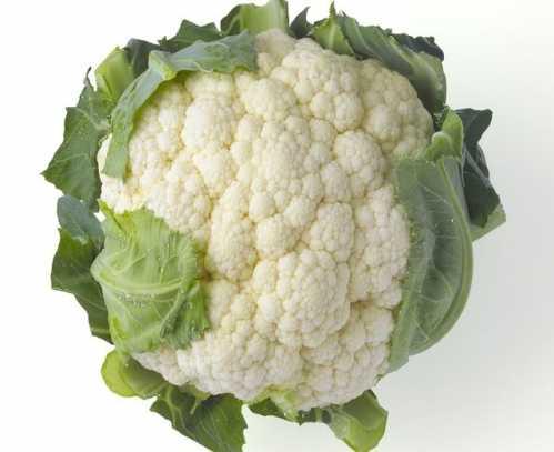 经常给孩子食用这五种蔬菜 三种蔬菜的营养